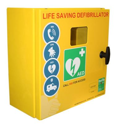 Picture of DEFIBRILLATOR MILD STEEL CABINET NO LOCK & ELECTRICS