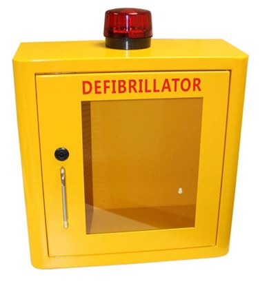 Picture of DEFIBRILLATOR MILD STEEL CABINET INTERNAL YELLOW