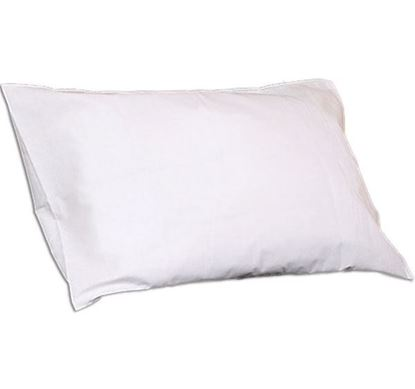 Picture of POLYESTER FILLED PILLOW (Q2085)
